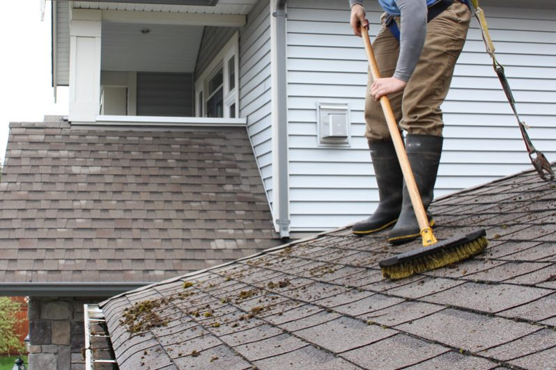 Professional roof cleaners langley